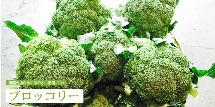 齋藤商店の小石川やさい通信(01)ブロッコリー